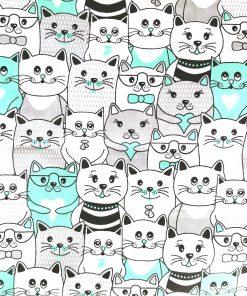 türkiz cicák